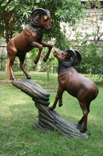 Two Bronze Rams on Rock